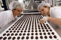 Dam pracę w Anglii na produkcji czekolady bez języka od zaraz Manchester