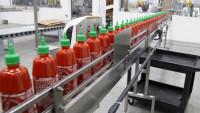 Od zaraz praca w Holandii bez znajomości języka Nieuw Vennep produkcja sosów