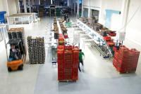 Fizyczna praca w Anglii od zaraz bez doświadczenia przy pakowaniu owoców na produkcji Madistone