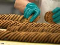Anglia praca dla kobiet od zaraz na produkcji ciastek Nottingham podstawowa znajomość języka