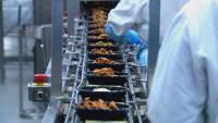Oferta pracy w Holandii pakowanie żywności od zaraz bez języka Roosendaal