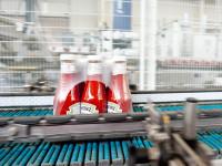 Oferta pracy w Niemczech bez języka przy pakowaniu keczupów Kolonia