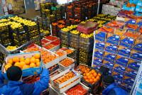 Dla par Szwecja praca od zaraz bez języka pakowanie owoców Norrköping