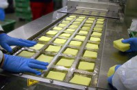 Praca Anglia bez znajomości języka dla par Liverpool UK pakowanie sera