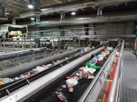 Ogłoszenie fizycznej pracy w Norwegii bez języka od zaraz Bergen przy sortowaniu odpadów