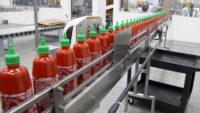 Praca Holandia bez znajomości języka na produkcji sosów od zaraz w Udenhout