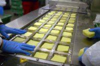 Praca w Anglii bez znajomości języka przy pakowaniu sera od zaraz Liverpool