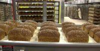 Praca w Danii przy pakowaniu pieczywa z językiem angielskim dla par, Hjorring