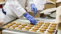 Oferta pracy w Holandii bez znajomości języka przy pakowaniu ciastek Ochten