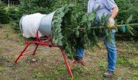Leśnictwo od zaraz Niemcy praca sezonowa bez języka przy choinkach w Neustrelitz