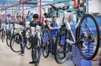 Dania praca od zaraz na produkcji rowerów bez znajomości języka Aarhus