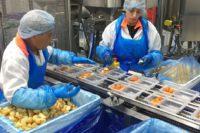 Pracownik produkcji spożywczej od zaraz bez języka praca w Holandii, Gorinchem
