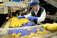 Praca w Belgii za granicą jako pracownik produkcji od zaraz, Fleurus