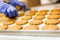Bez znajomości języka pakowanie ciastek i czekoladek Czechy praca od zaraz Opawa