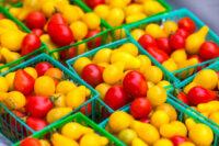 Praca w Holandii od zaraz sortowanie i pakowanie warzyw, owoców, Haga