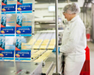 Bez znajomości języka praca w Danii dla par przy pakowaniu sera od zaraz Aalborg