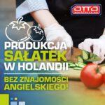 Dam pracę w Holandii bez języka na produkcji przy pakowaniu sałatek od zaraz w Rijnsburgu
