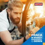 Pracownik produkcji rowerów do pracy w Holandii od zaraz bez języka, Dieren 2020