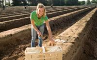 Bez znajomości języka Niemcy praca sezonowa zbiory szparagów od marca 2021 Geiselhöring