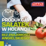 Praca w Holandii bez znajomości języka na produkcji sałatek od zaraz w Rijnsburg