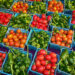 warzywa Holland
