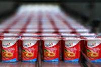 Produkcja jogurtów bez znajomości języka praca w Danii od zaraz Kopenhaga