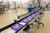 Bez języka oferta pracy w Niemczech na produkcji czekolady od zaraz fabryka Köln