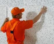 Praca w Niemczech na budowie od zaraz docieplenia bez języka niemieckiego w Sassnitz